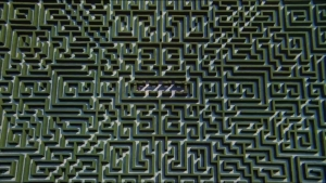 the shining maze